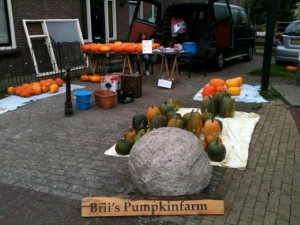 Brii Pumpkinfarm borden (3)